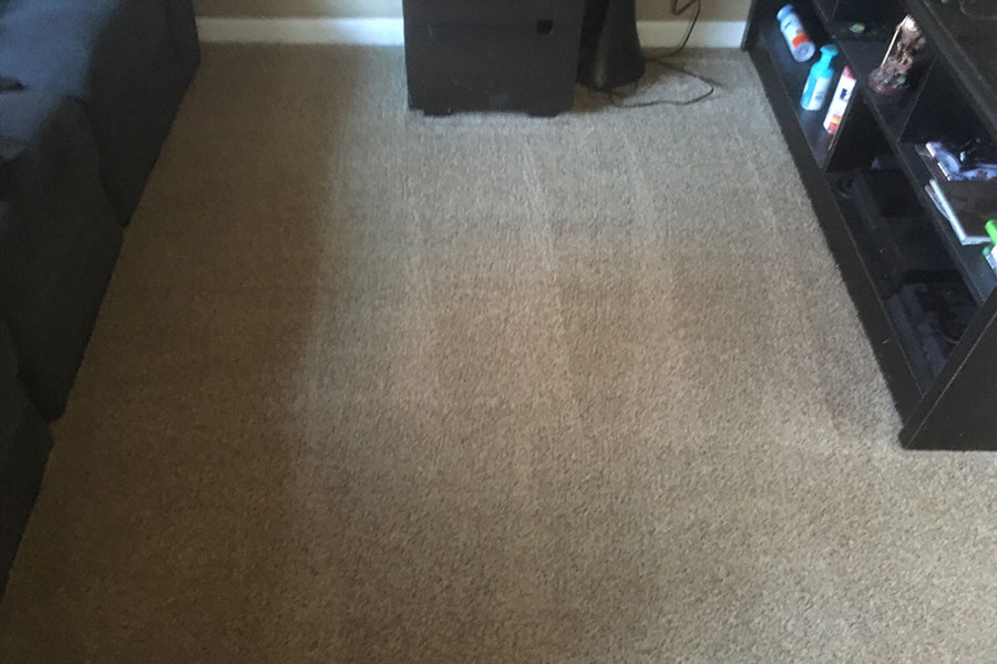 carpet cleaning in westminster