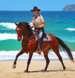 Equathon Horse Riding - Business Accountant Clienti