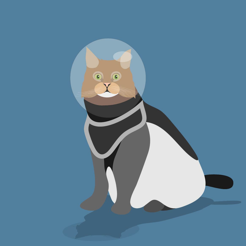 Le Chatstronaute : Character Design, création graphique, mascotte