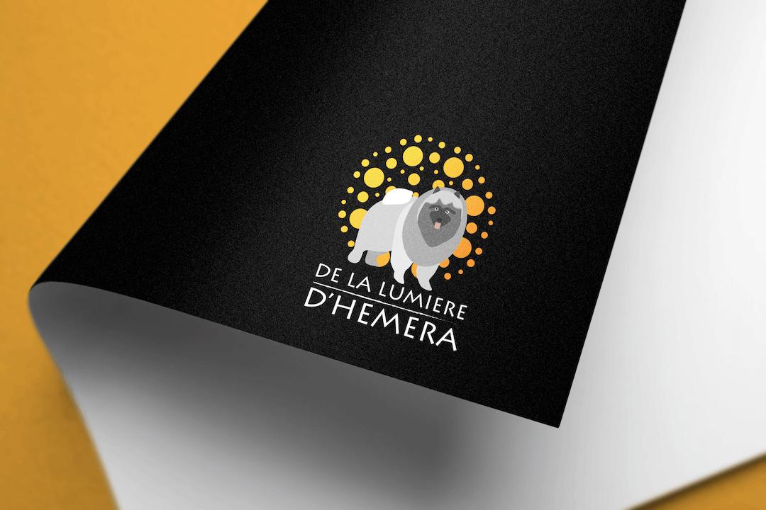 De La Lumière d'Hemera : création d'un Logotype