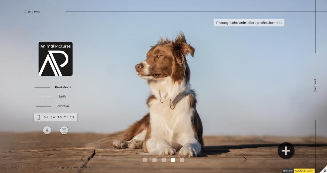 Image du site animalpictures.fr