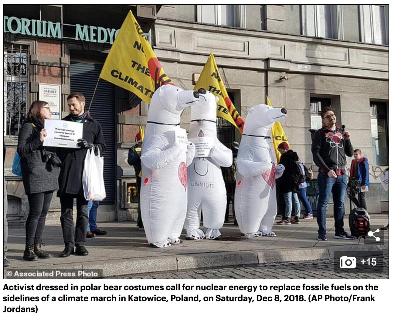 COP24 nuclear activists