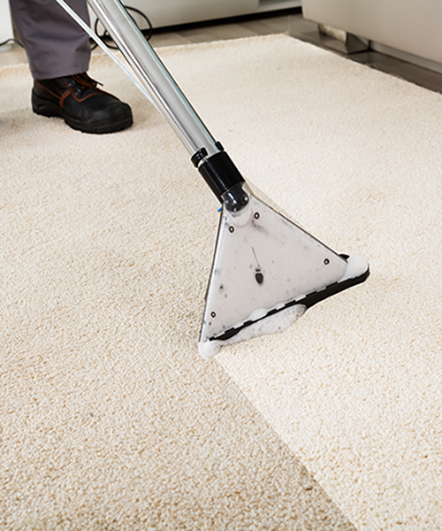 carpet cleaning a home in seattle