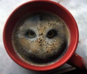The image of an Owl's face starring back from inside a Coffee  mug