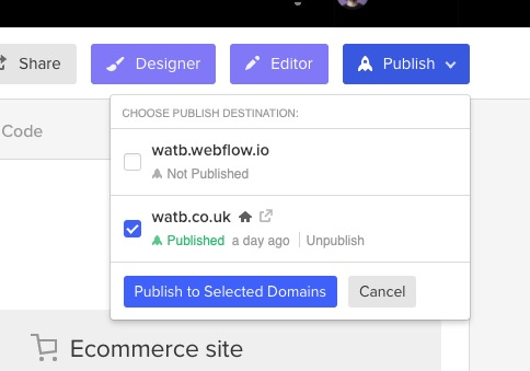 screenshot of webflow publish dialog