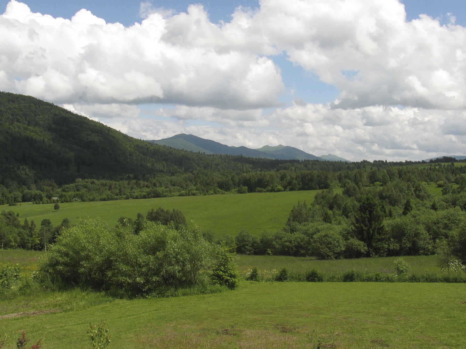 widok na góry