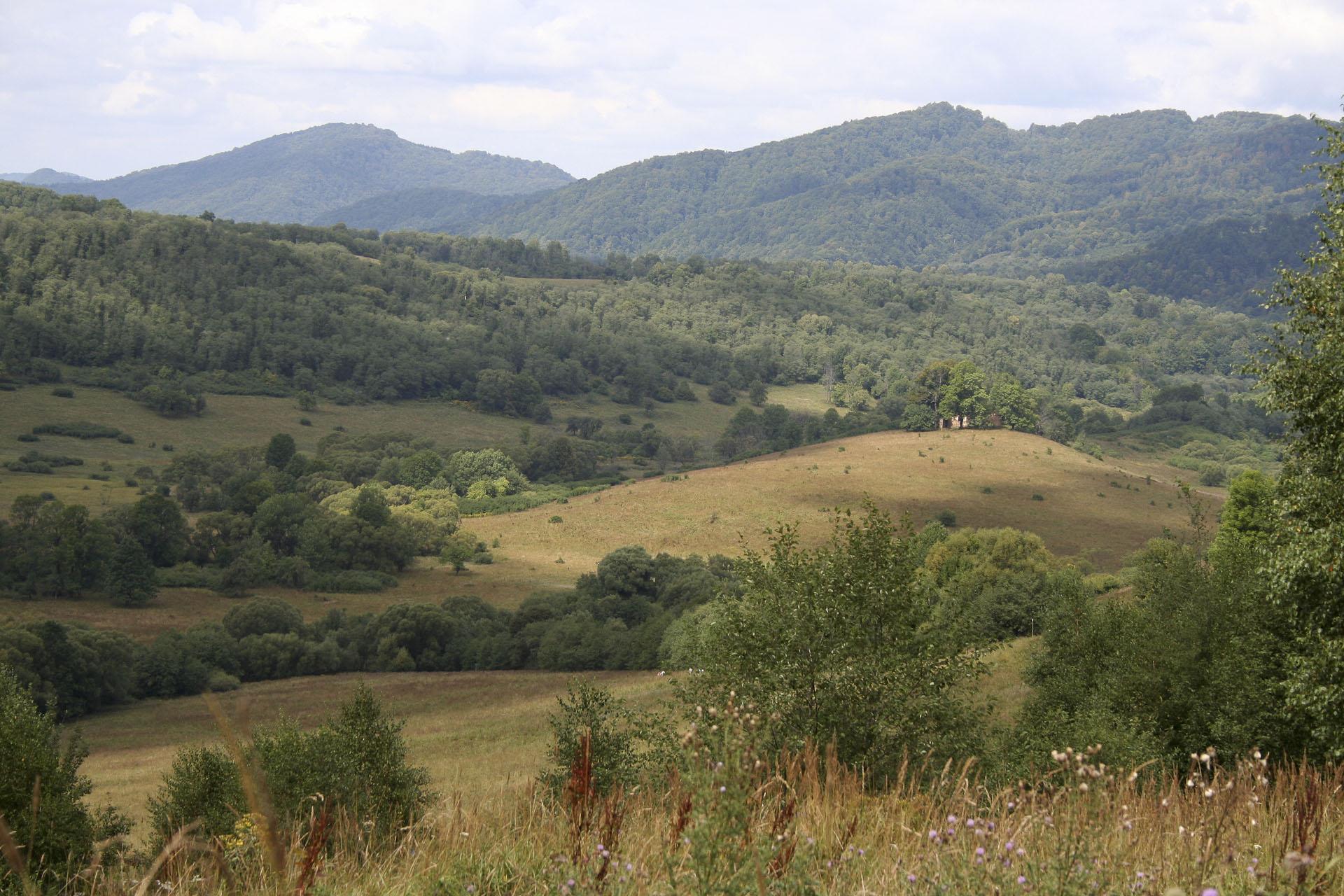 góry w Bieszczadach ze szlaku