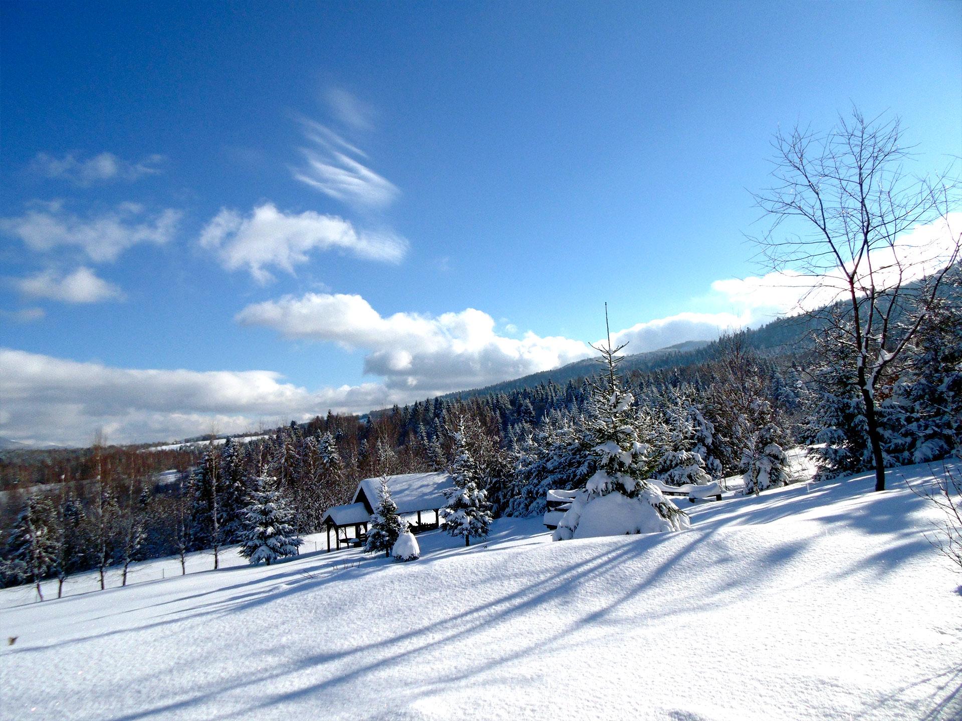zimowe widoki w okolicy