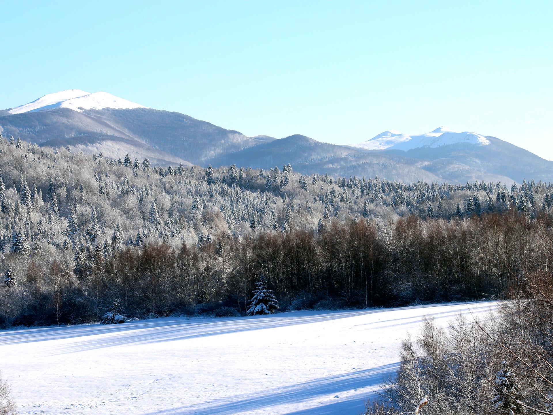 zimowy widok na Połoniny