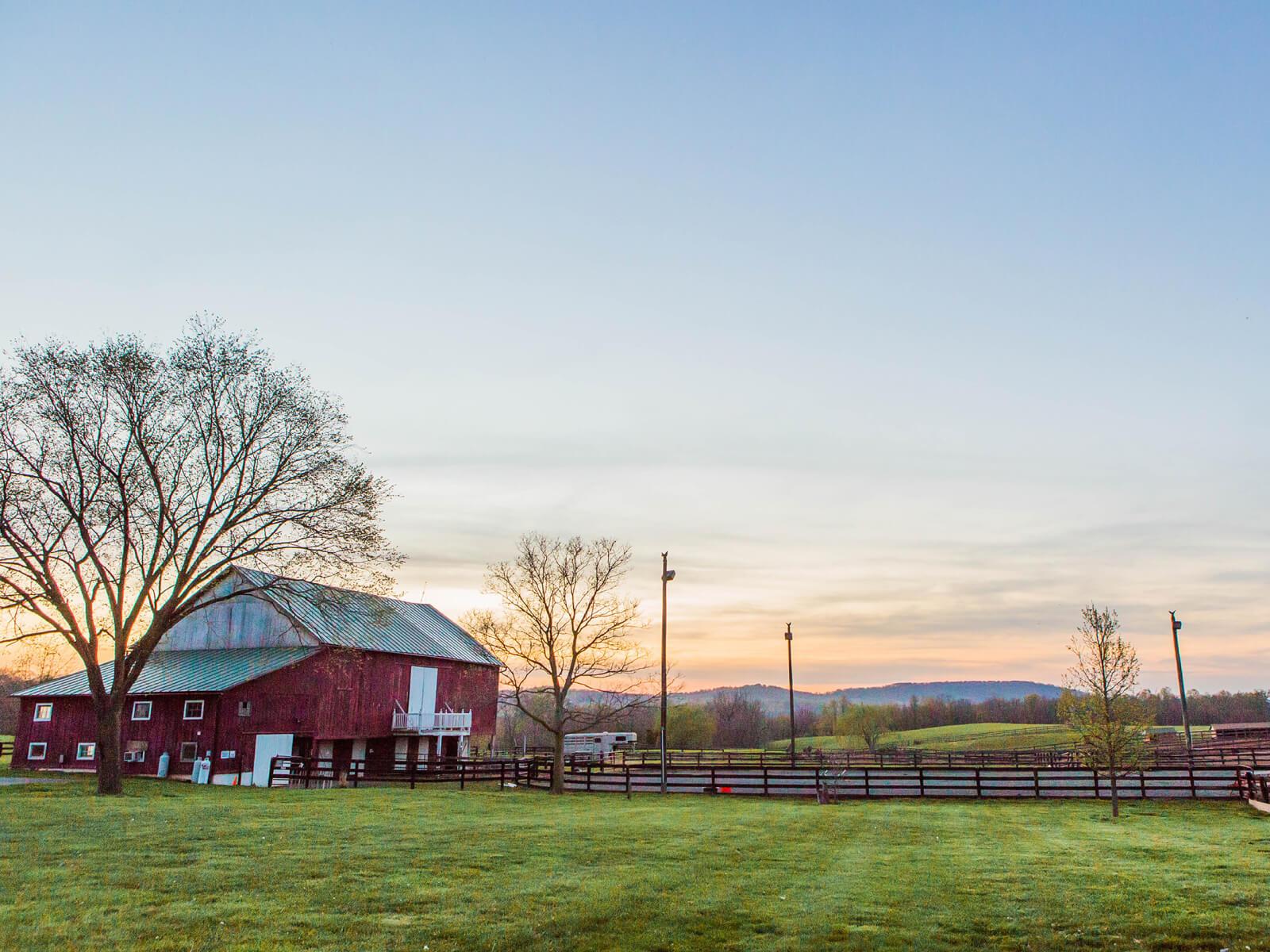 Faith Like a Mustard Seed Farm Picutre Gallery