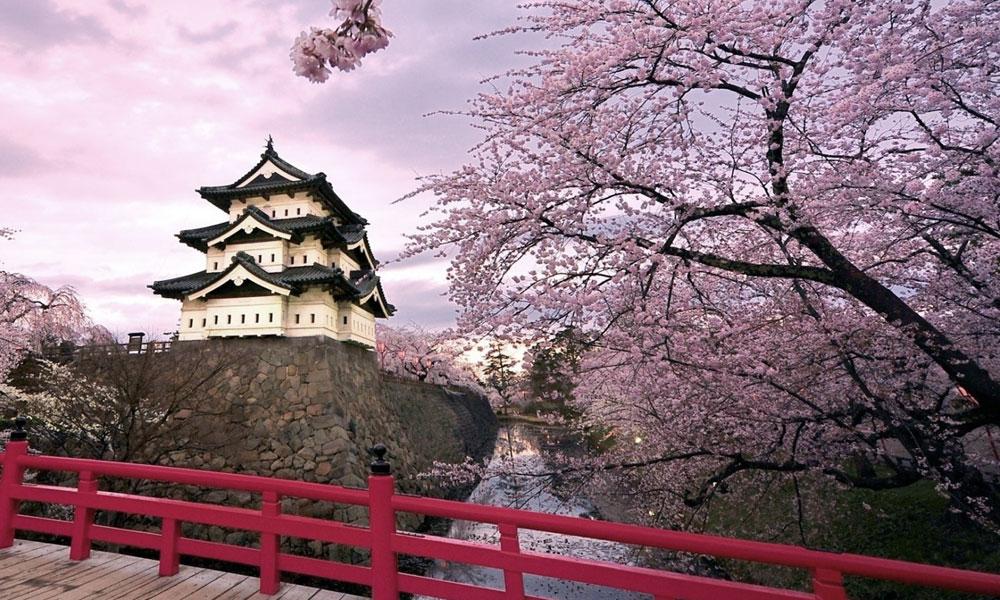 viaggio di nozze ad Aprile Giappone