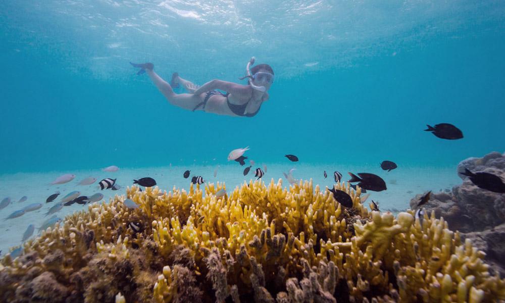 viaggio di nozze ad Aprile Isole Cook