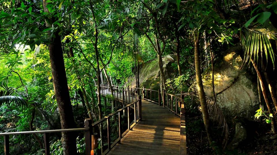 Japamala - Viaggio di nozze in Malesia