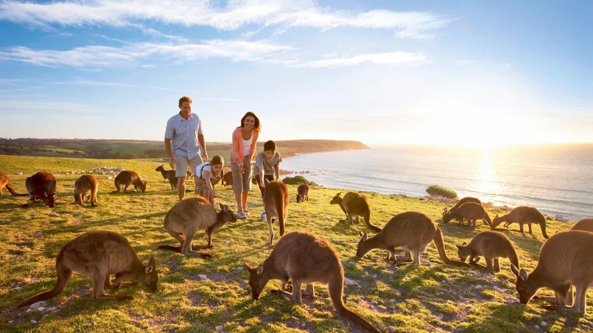 Viaggio di nozze a Settembre Australia Cangaroo Island