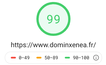score PageSpeed Insight pour Dominxenea.fr