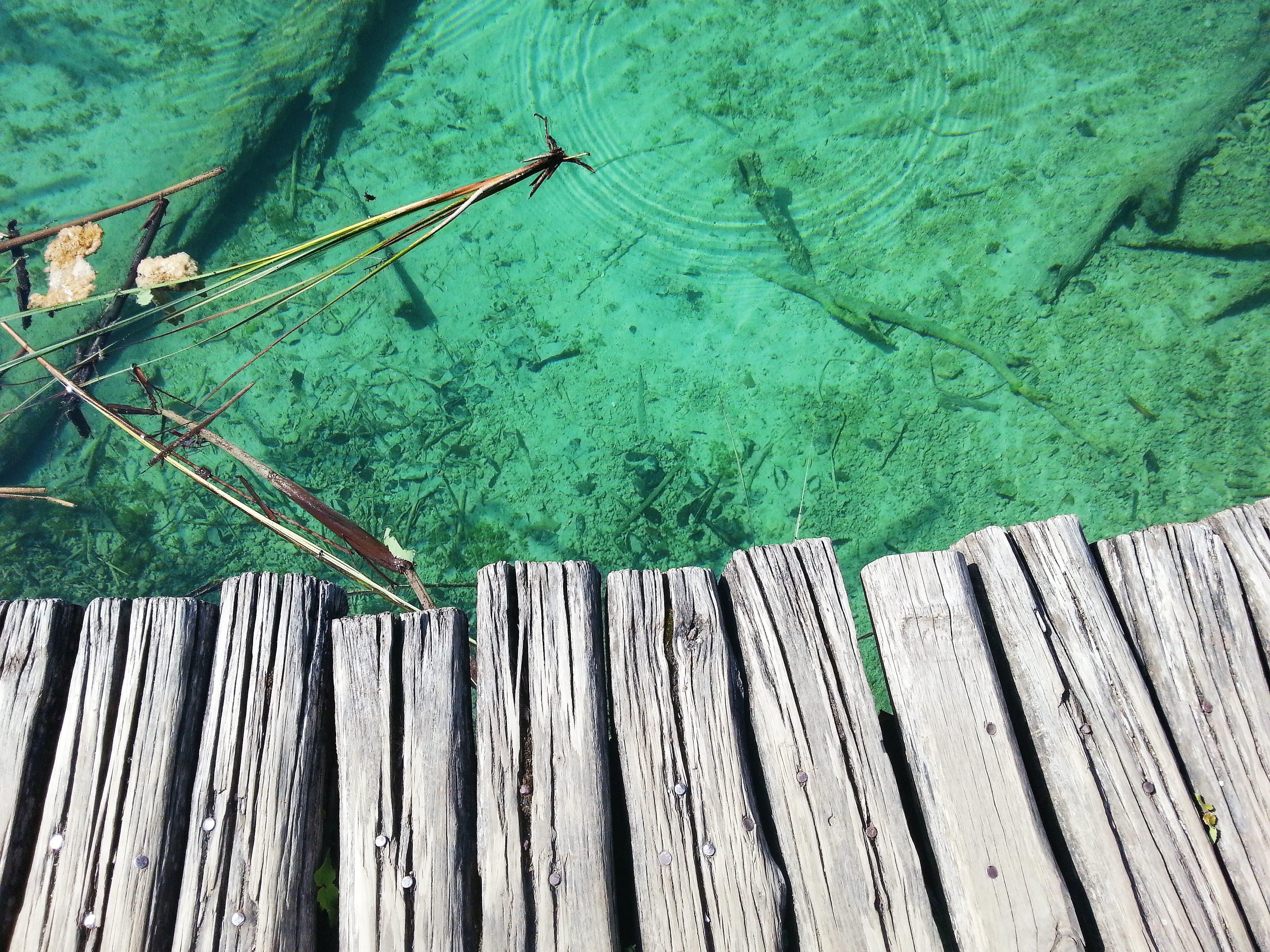 Вода, плитвички езера, дървен мост, oatsandberries