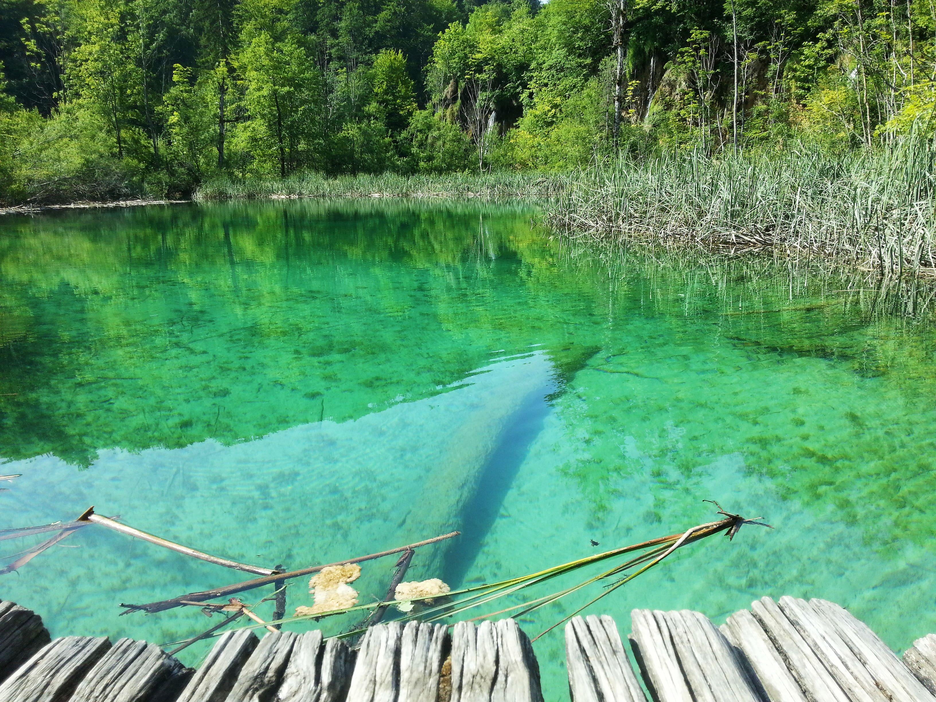 чисто езеро, плитвичко езеро, oatsandberries