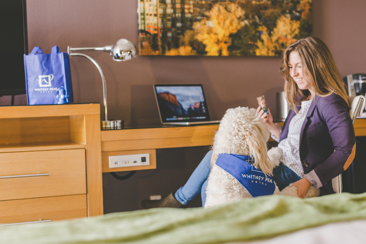 woman-pets-dog-in-guestroom