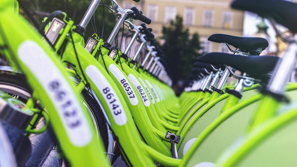 Green pool-bicycles