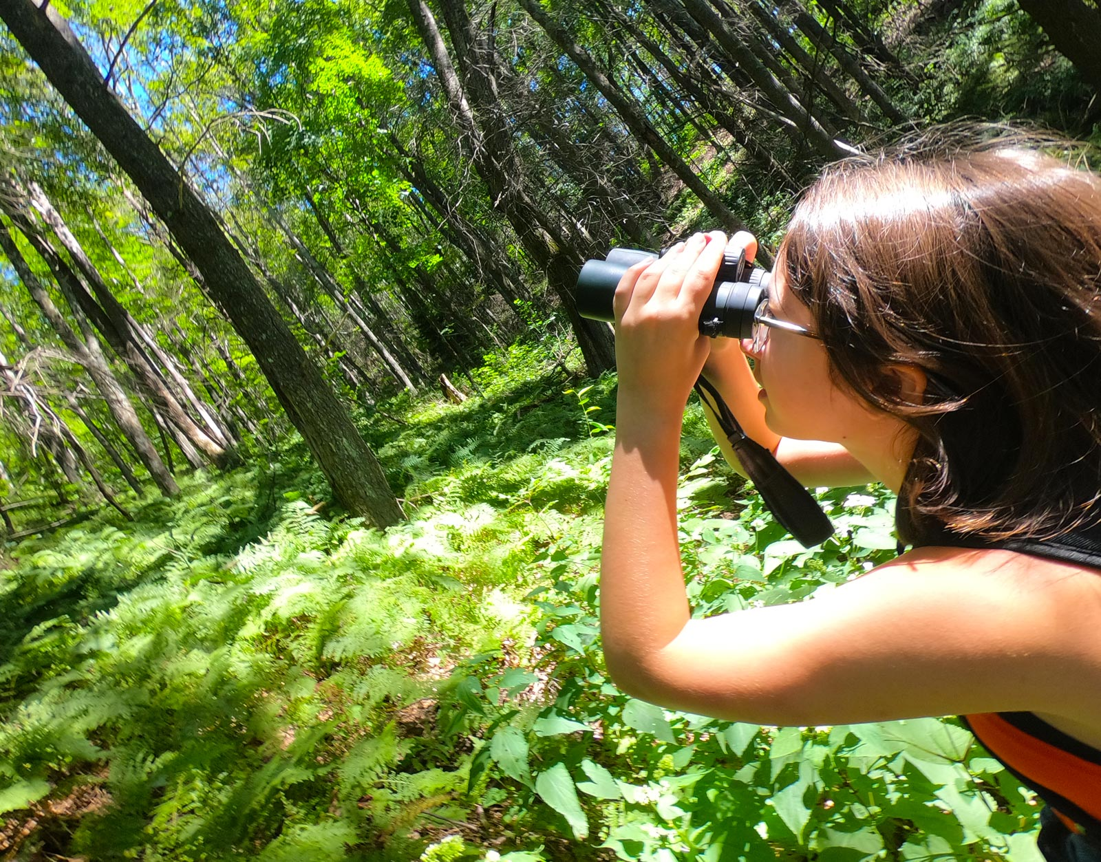 Girl with binoculars looking up on a mountain trail