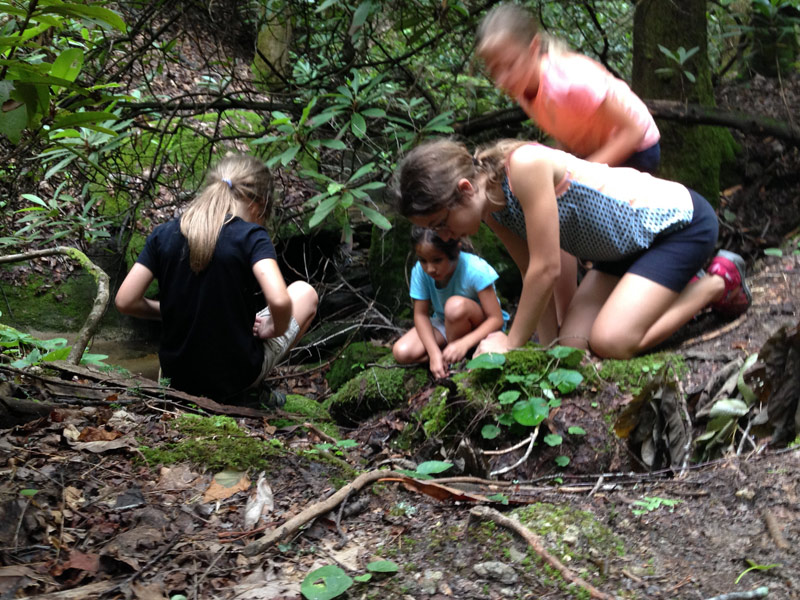 Image of four girls on a mossy stream bank wth rhododendrons while camping in Stone Mountain State Park, North Carolina