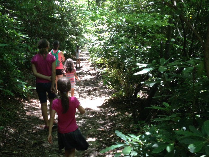 photo of mother and four daughters hiking through a rhododentrons' trail with sunlight gleaming while camping in Stone Mountain State Park, North Carolina