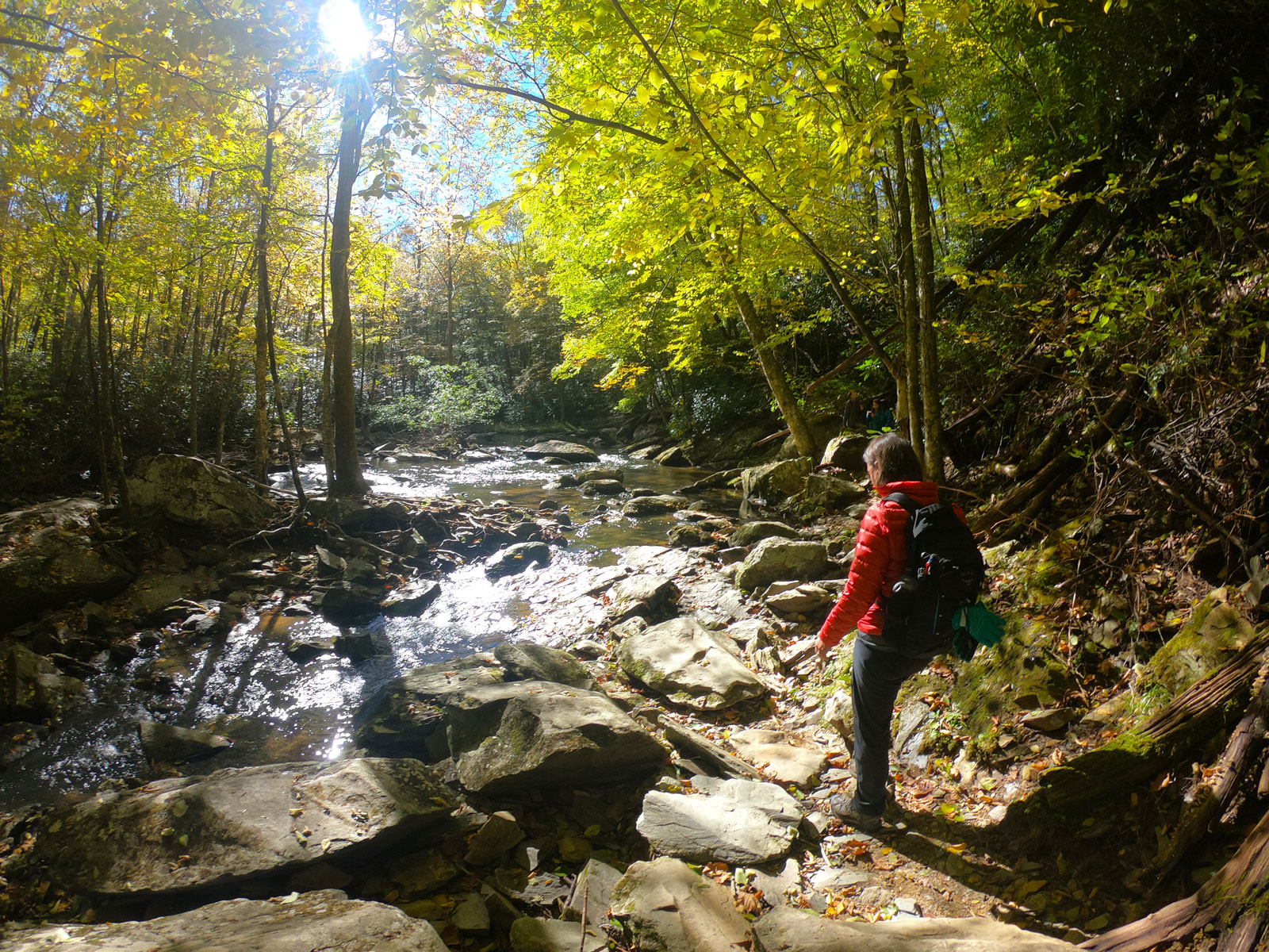 Woman hiking on the Boone Fork Trail near Julian Price Campground, North Carolina, on a beautiful fall day on Blue Ridge Parkway