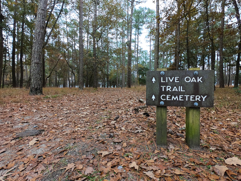 Trail head sign for Live Oak Trail and Cemetery Trail on November day at Goose Creek State Park in North Carolina