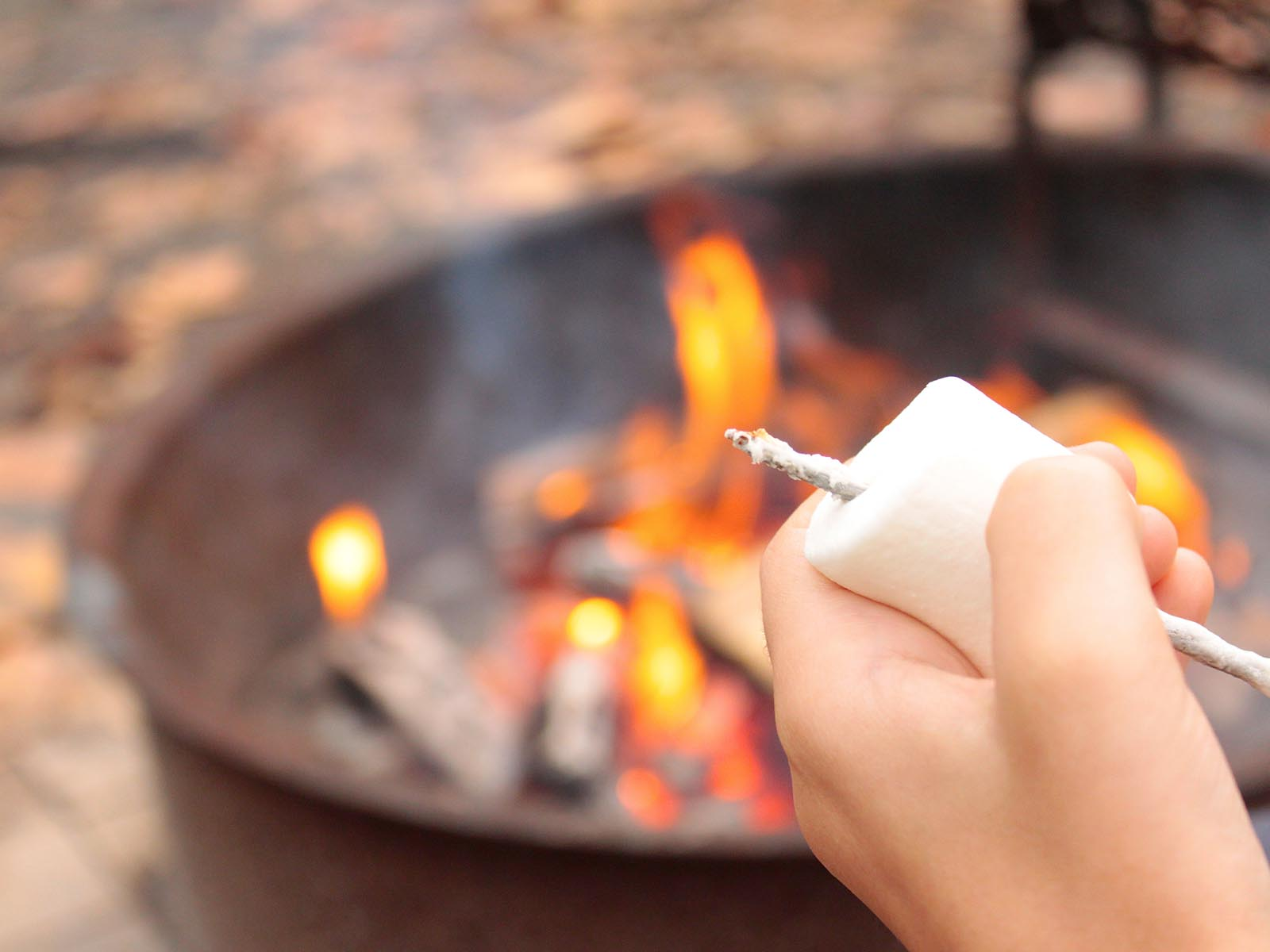 Hand with marshmellow for roasting with fire and firepit while camping at Gooe Creek State Park, North Carolina