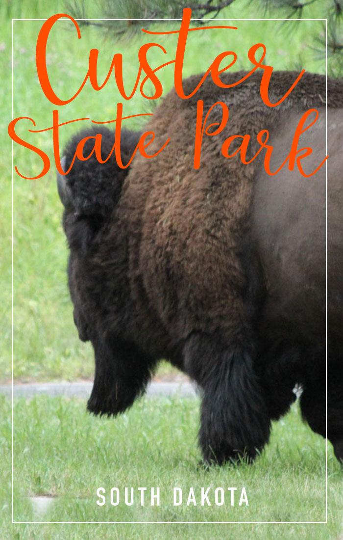 Custer State Park Pinterest promo