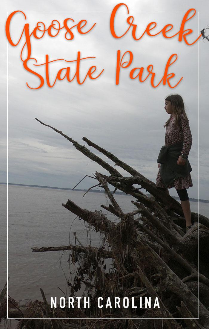 Goose Creek State Park Pinterest Pin