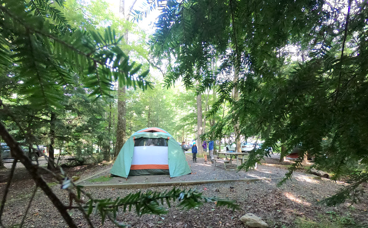 Campsite at Black Mountain in Pisgah National Forest, North Carolina