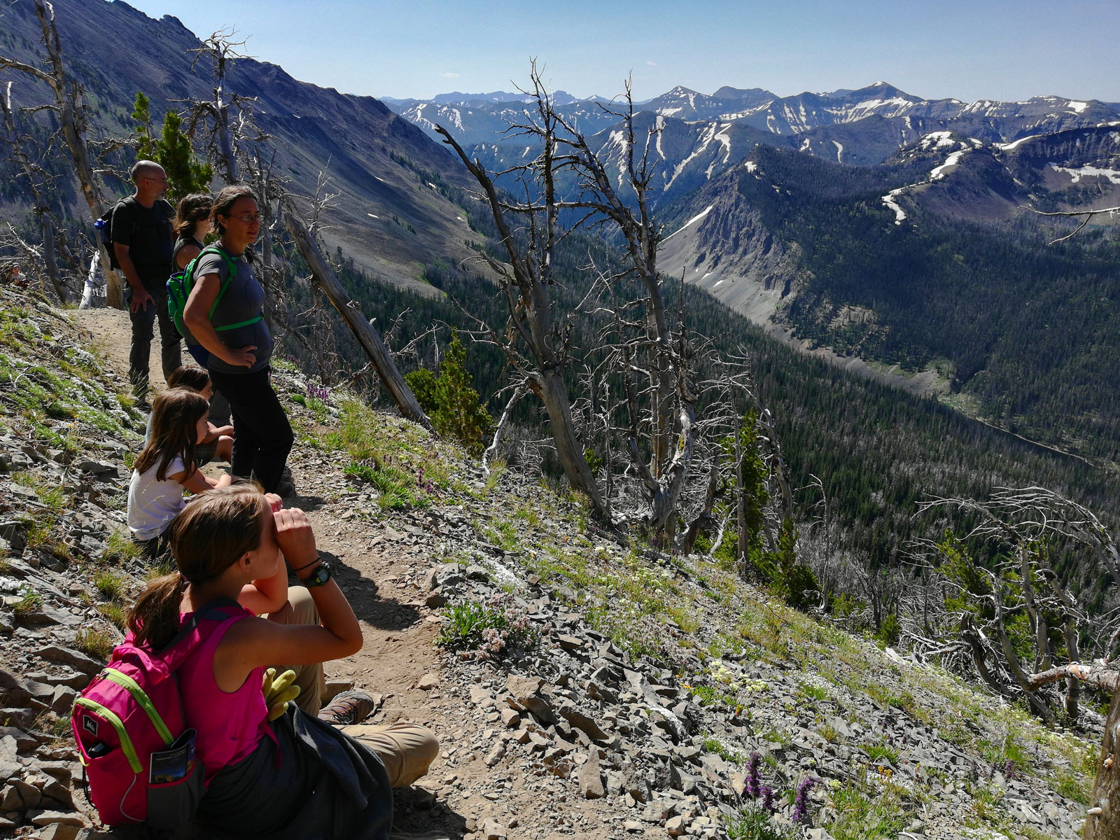 Family overlooking the Absaroka Range on the trail to Avalanche Peak