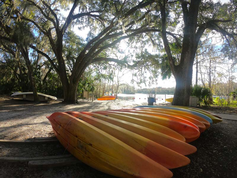 Kayak and canoe rentals at Blue Spring State Park, Florida