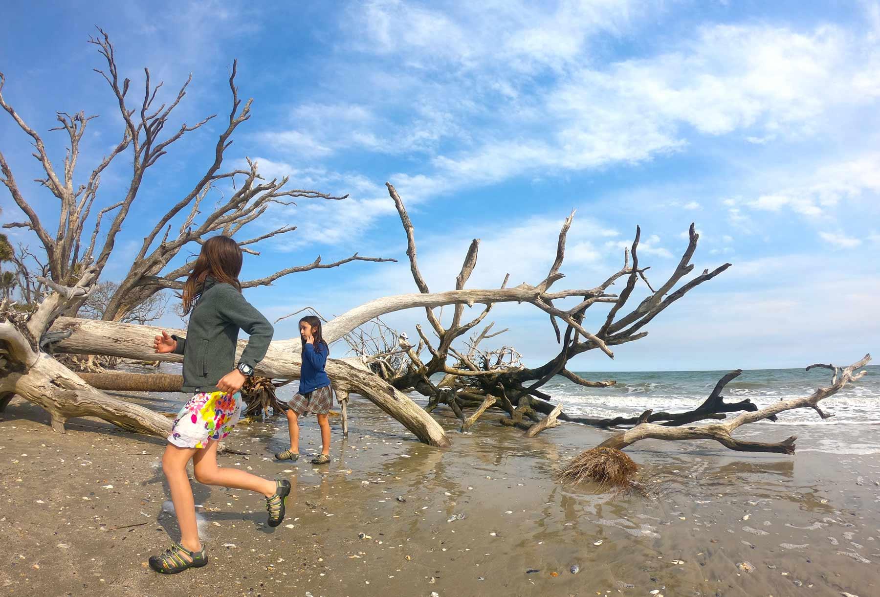 "Two girls playing on ""Beach Boneyard"" at Botany Bay Plantation Heritage, South Carolina"