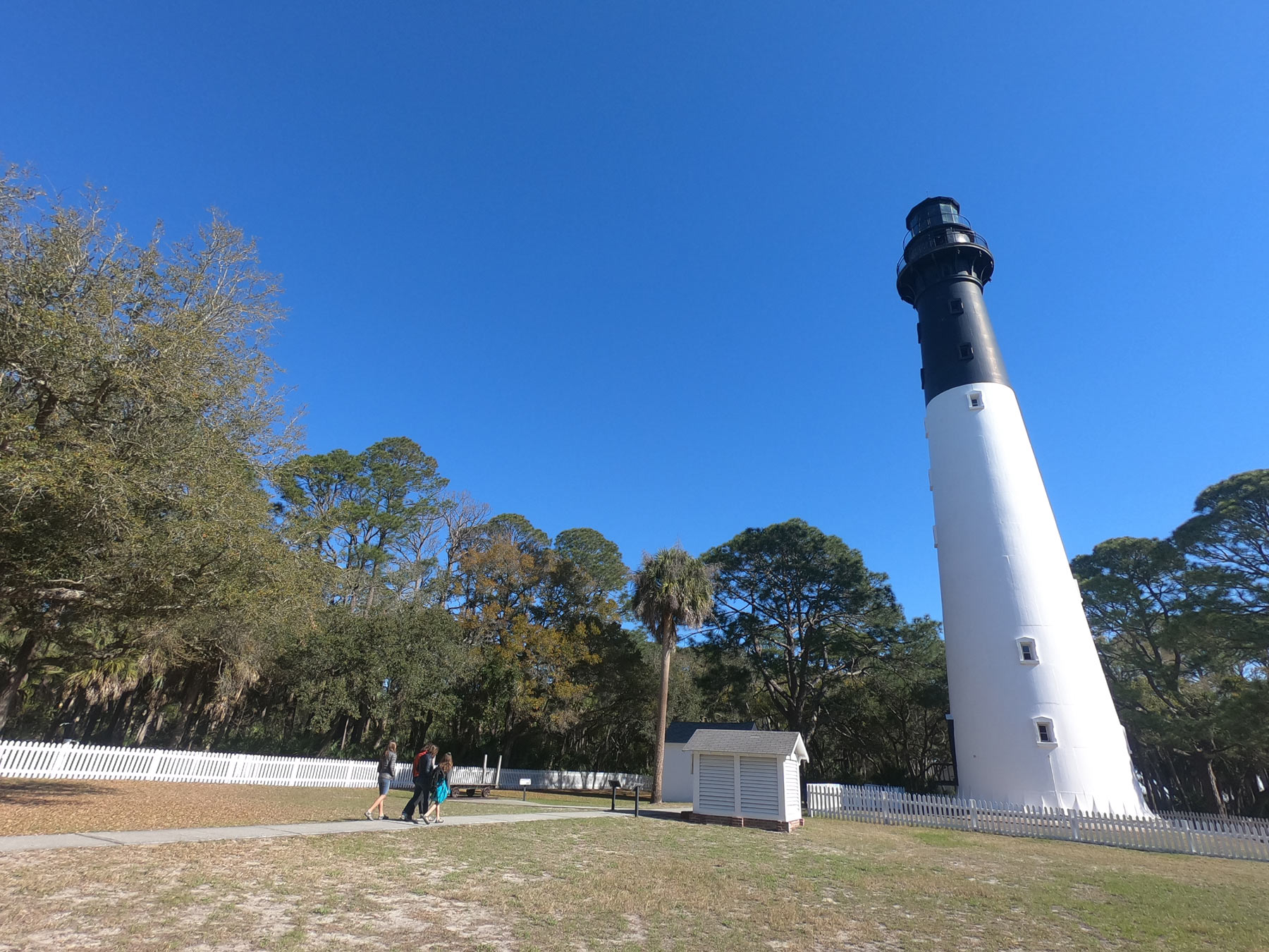 Family walking to Hunting Island State Park Lighthouse under a brilliant blue sky