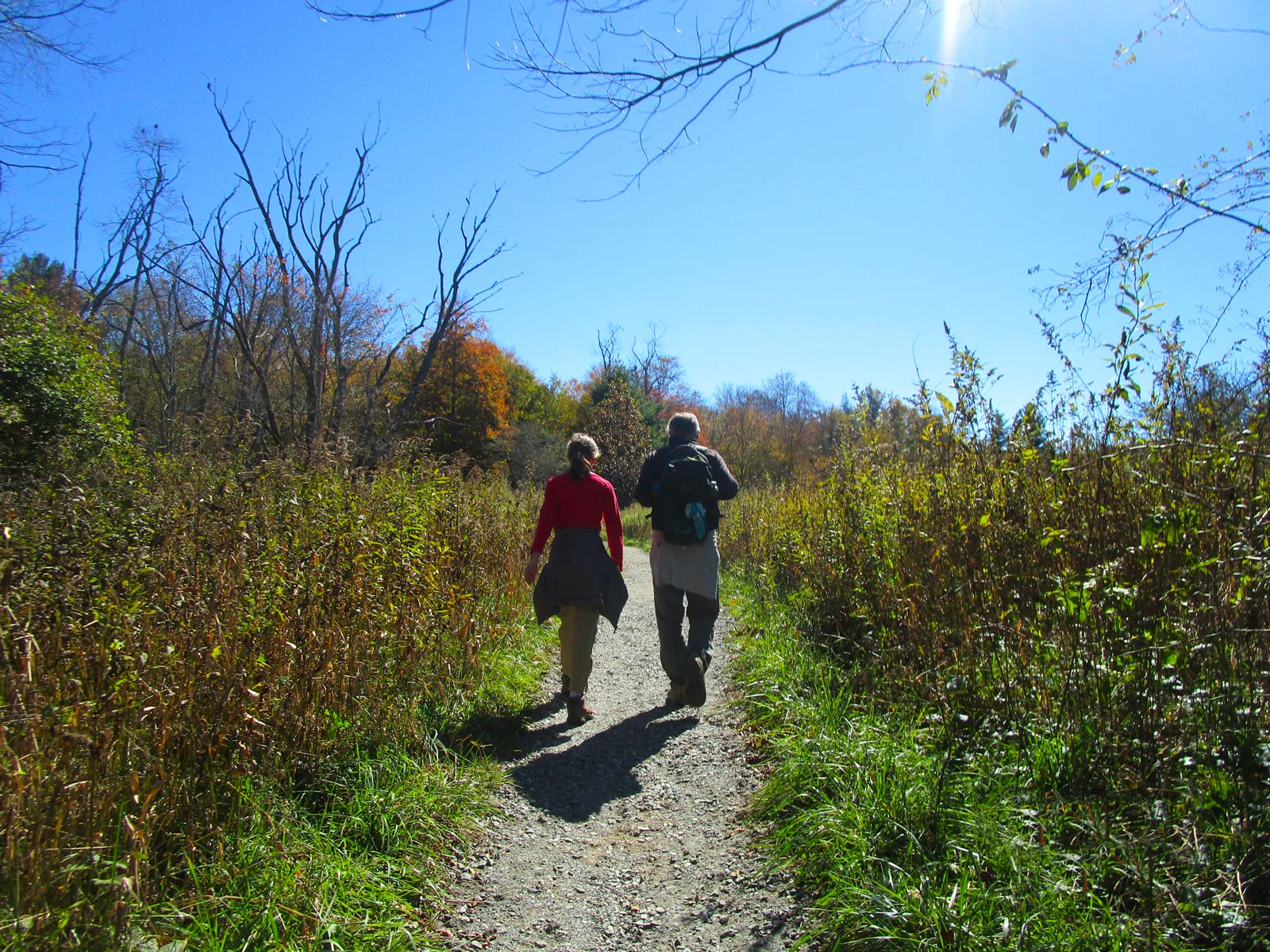 Two kids hiking on the Boone Fork Trail near Julian Price Campground off the Blue Ridge Parkway, North Carolina