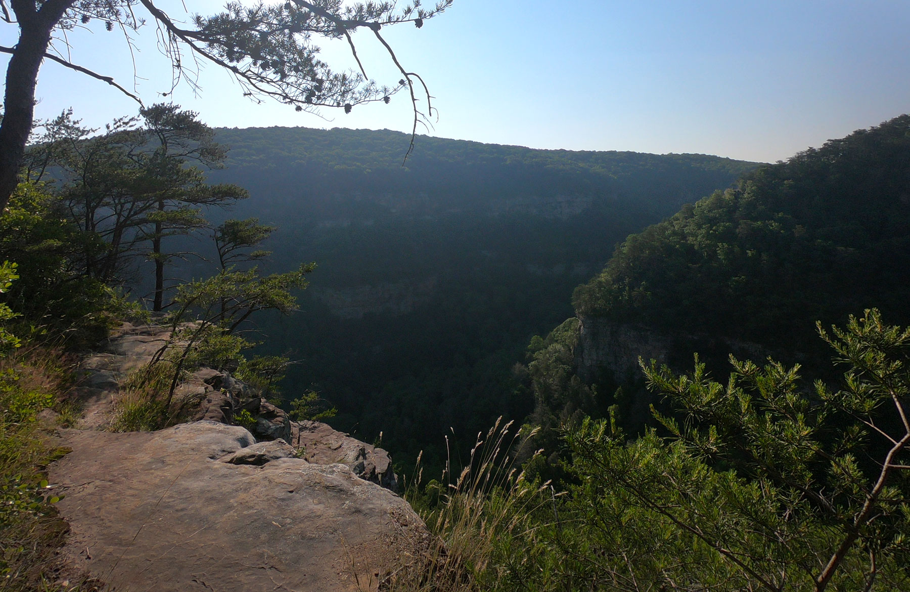 Hiking the West Rim Loop Trail at the overlook at Cloudland Canyon State Park, Georgia