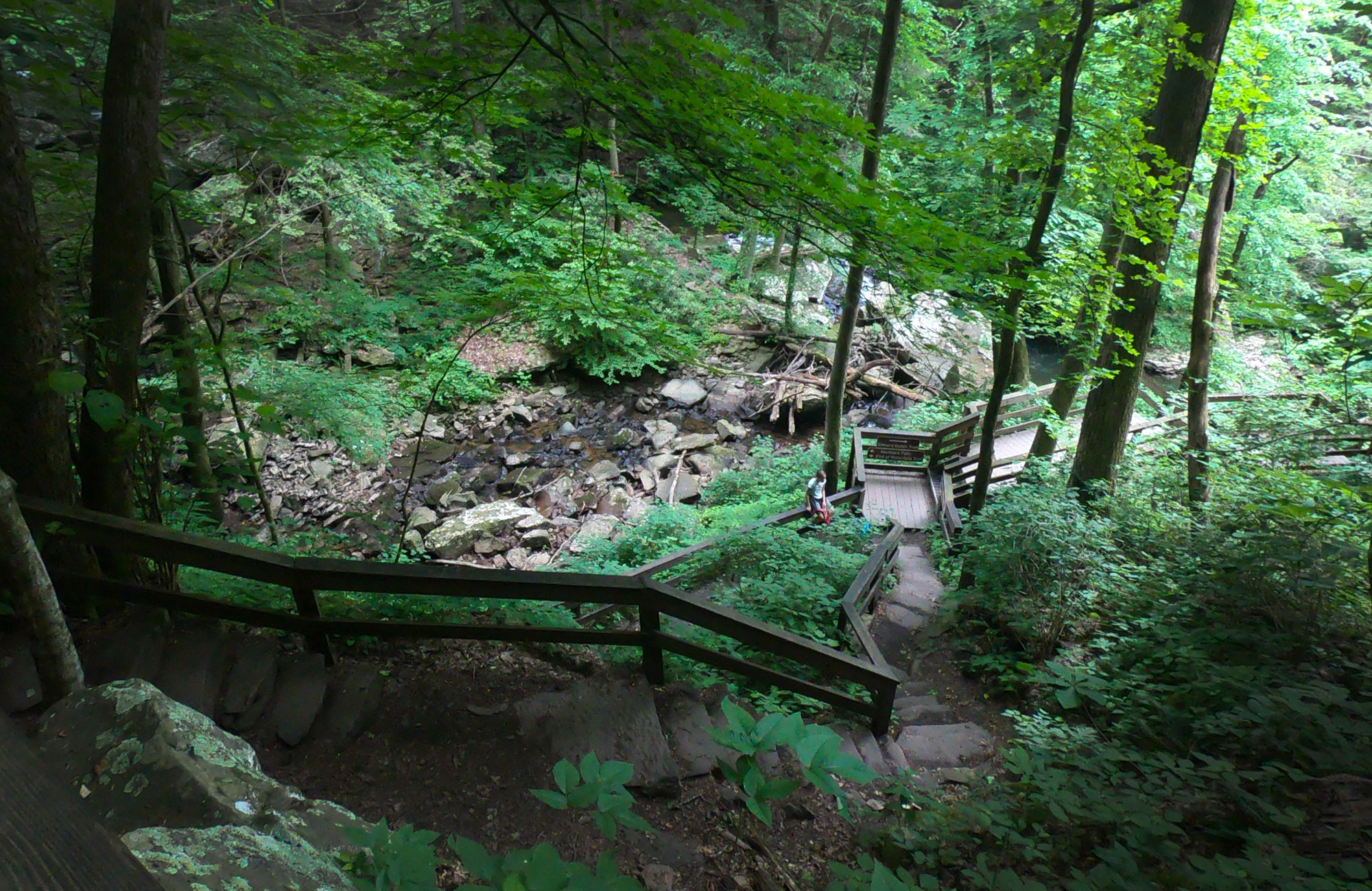 Hiking 600 steps to the Cherokee Falls and Hemlock Falls trail at Cloudland Canyon State Park, Georgia