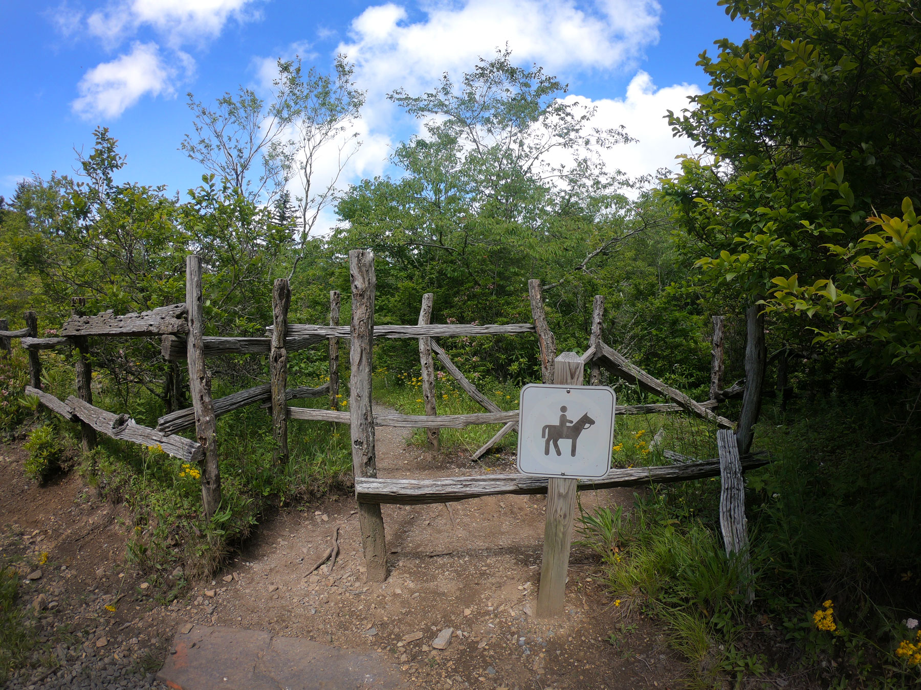 Wooden fence at the entrance to Cabin Creek Trail while camping at Grayson Highlands State Park, Virginia
