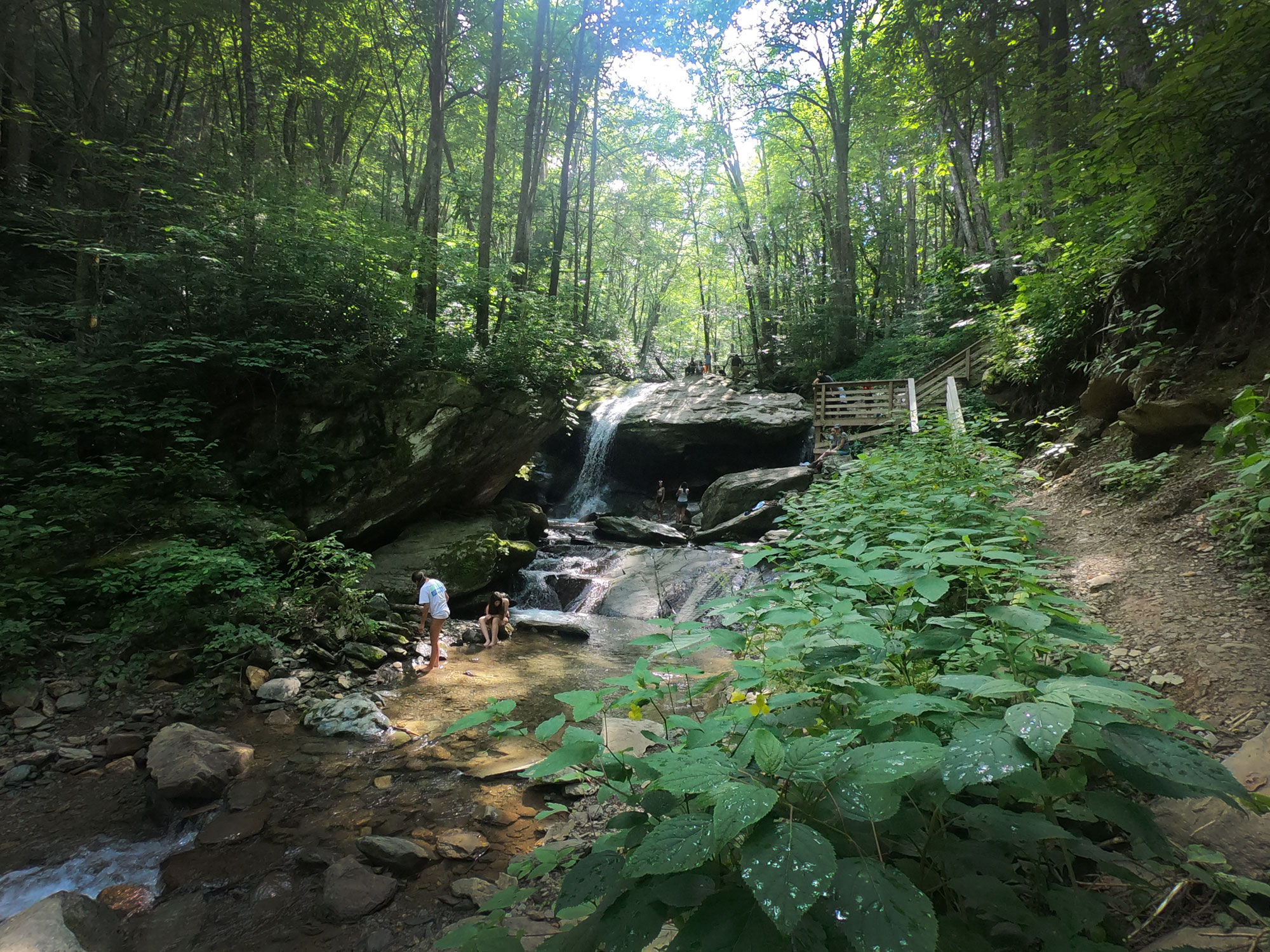 People swimming in the Otter Falls, near Blue Ridge Parkway, North Carolina