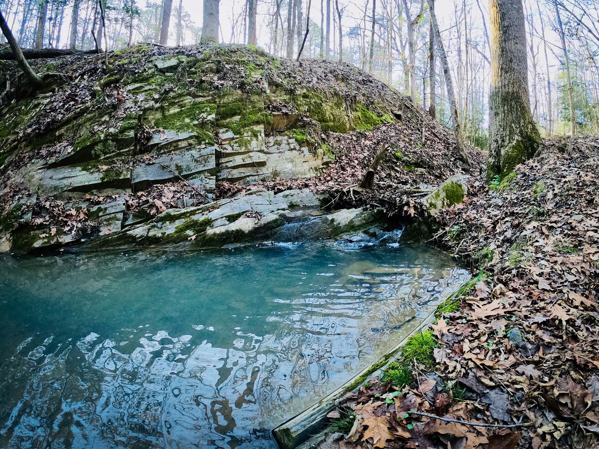 Blue water and quarry wall on the Quarry Trail Loop  in Morrow Mountain State Park, North Carolina