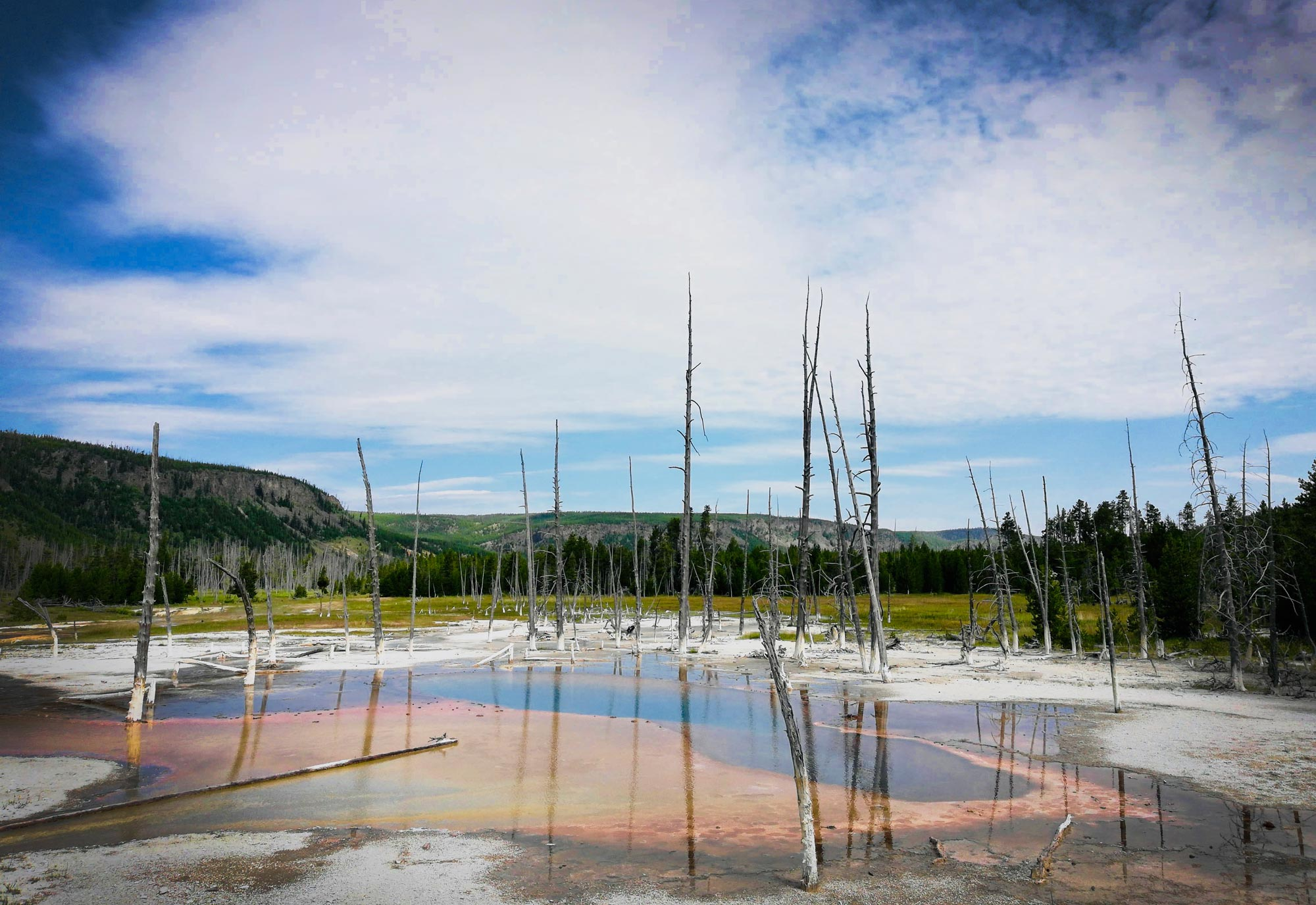 Opalescent Pool in the Black Sand Basin in Yellowstone National Park
