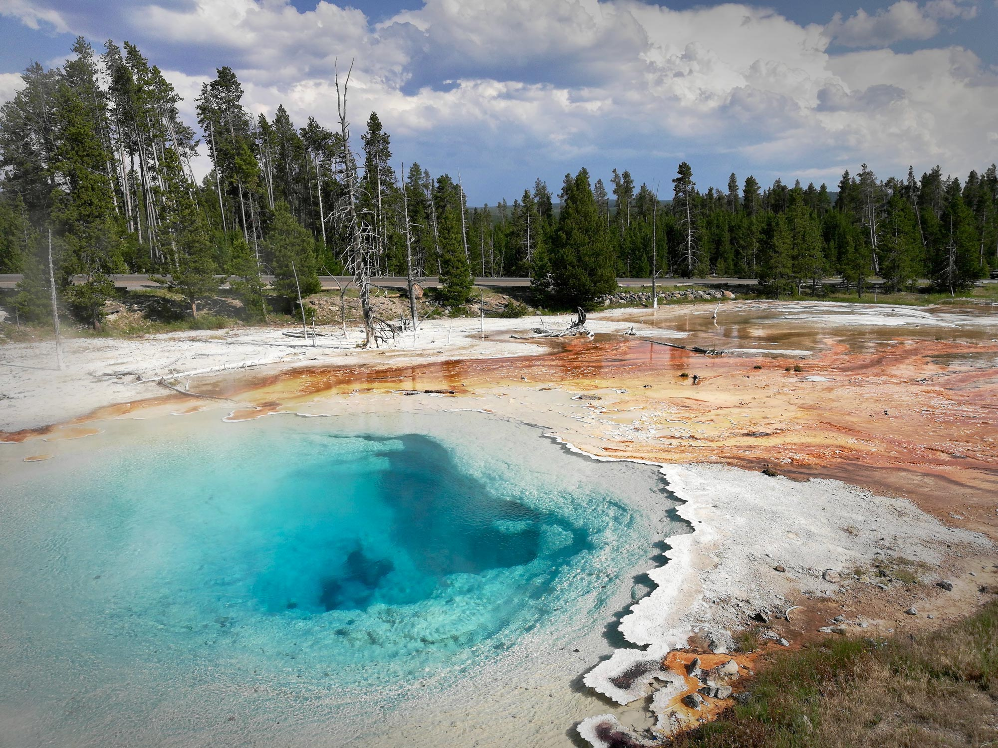 Silex Spring in Fountain Paint Pots in Yellowstone National Park