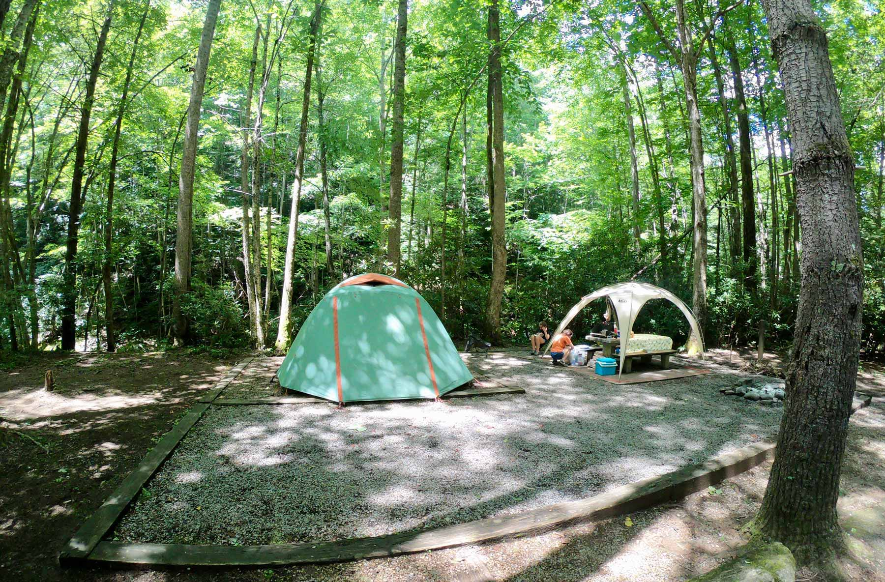 Tent camping in Roan Mountain State Park, Tennessee