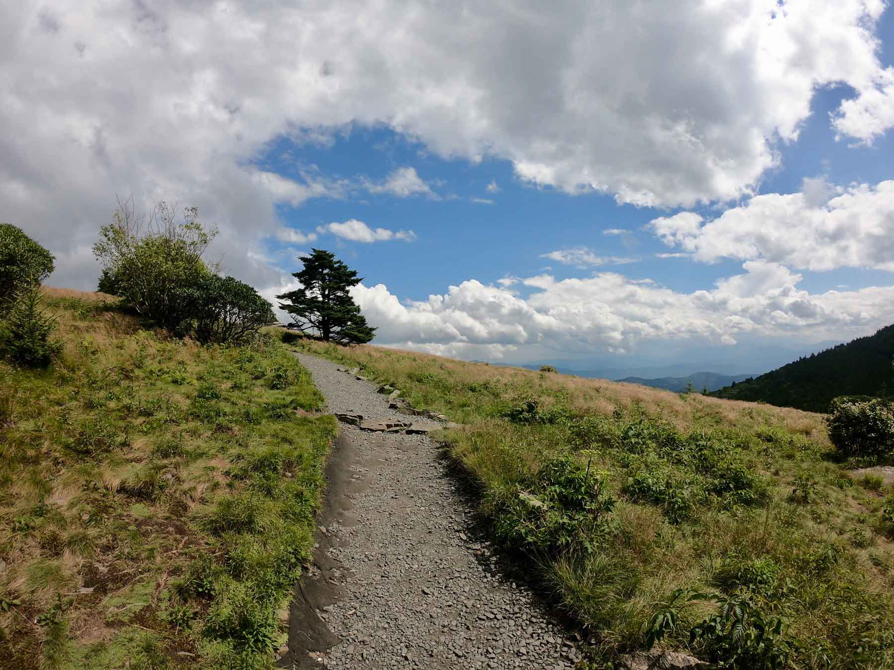 Appalachian Trail leading to Round Bald with blue skies near Roan Mountain State Park, Tennessee