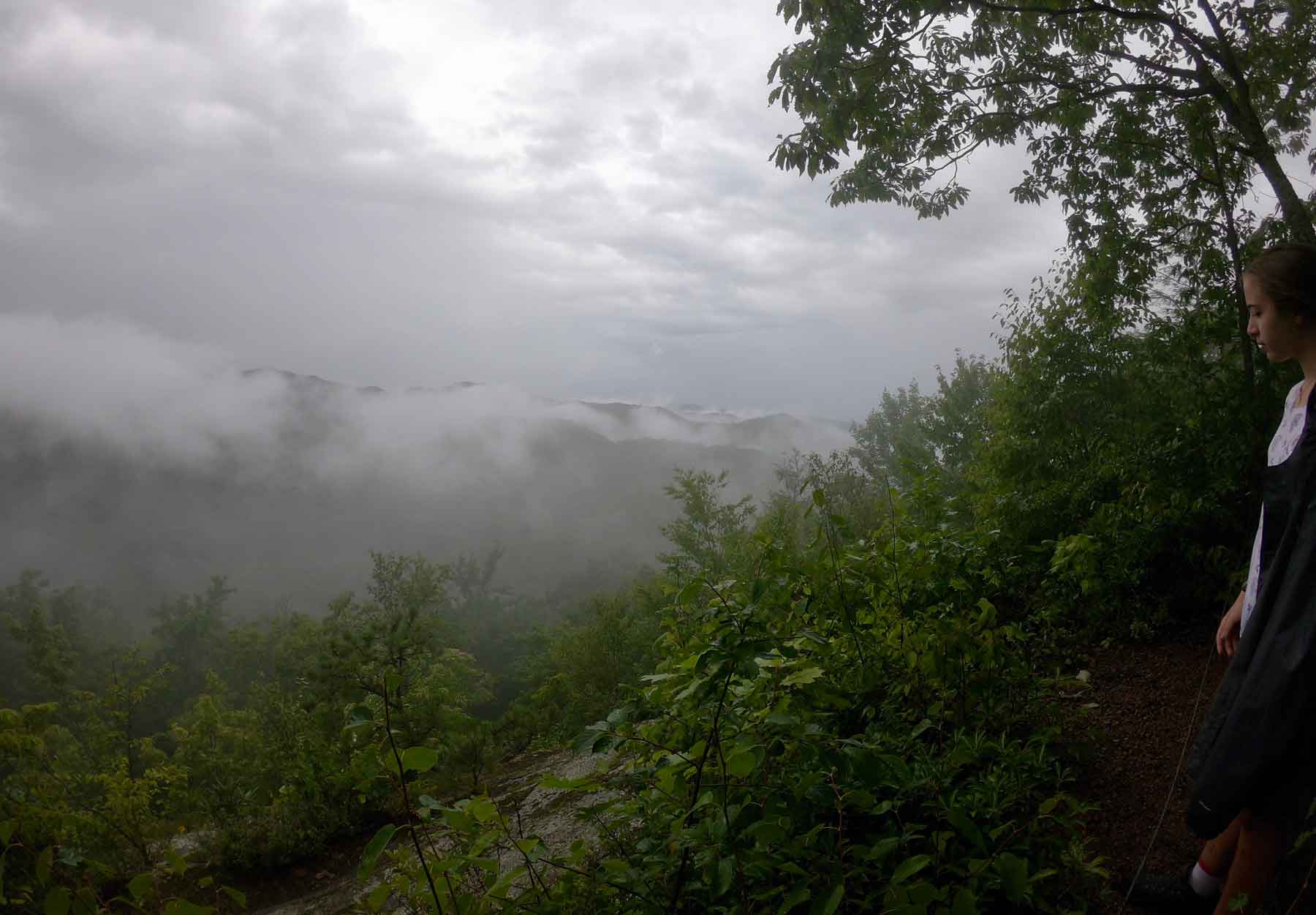 Raven Rock Trail Overlook on a misty afternoon in Roan Mountain State Park, Tennessee