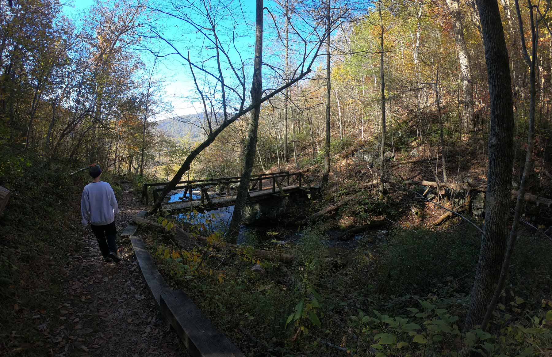 Woman hiking to bridge on the Fallingater Cascades Trail off Blue Ridge Parkway, Virginia