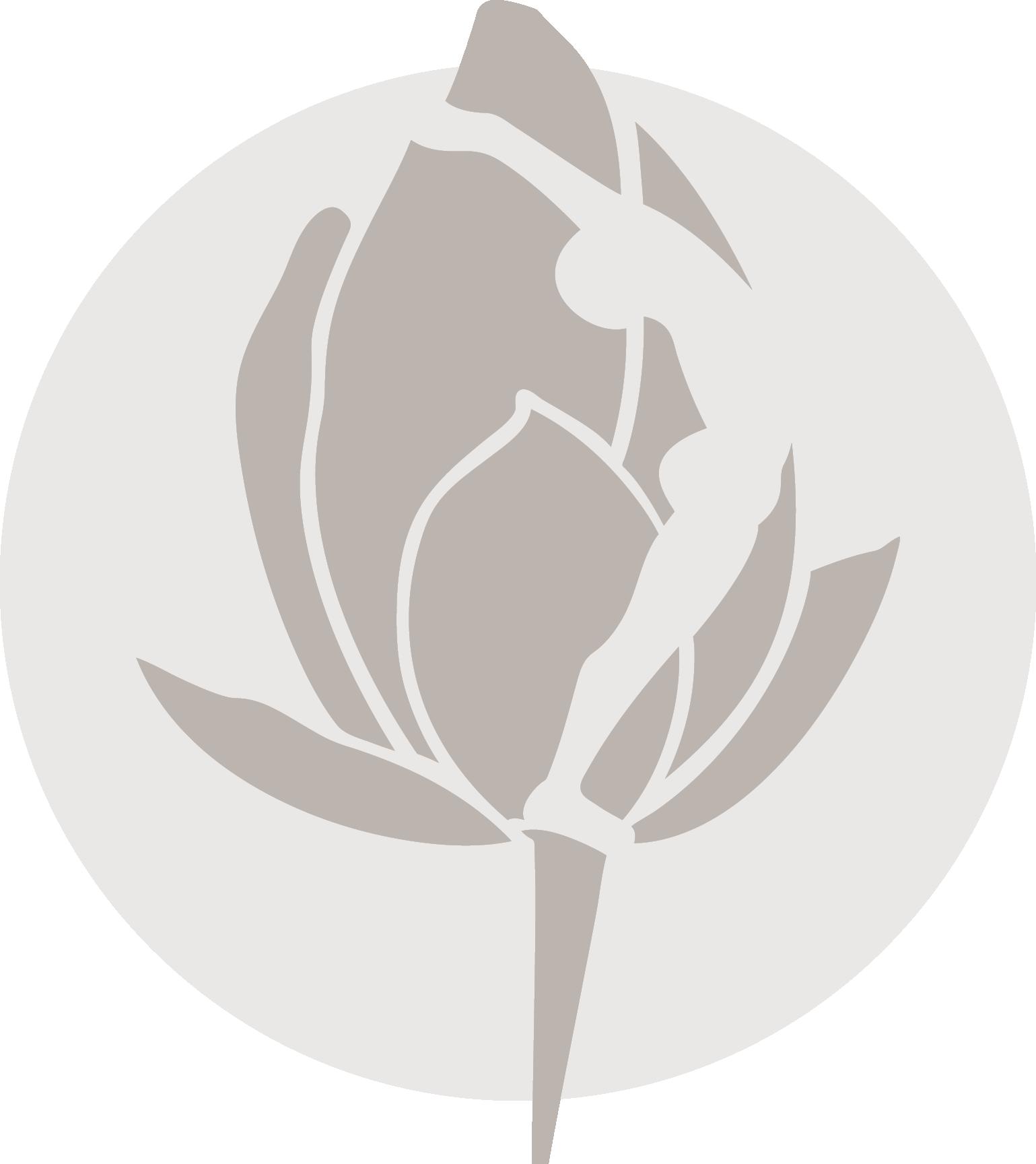 Yoga santosha icon gray