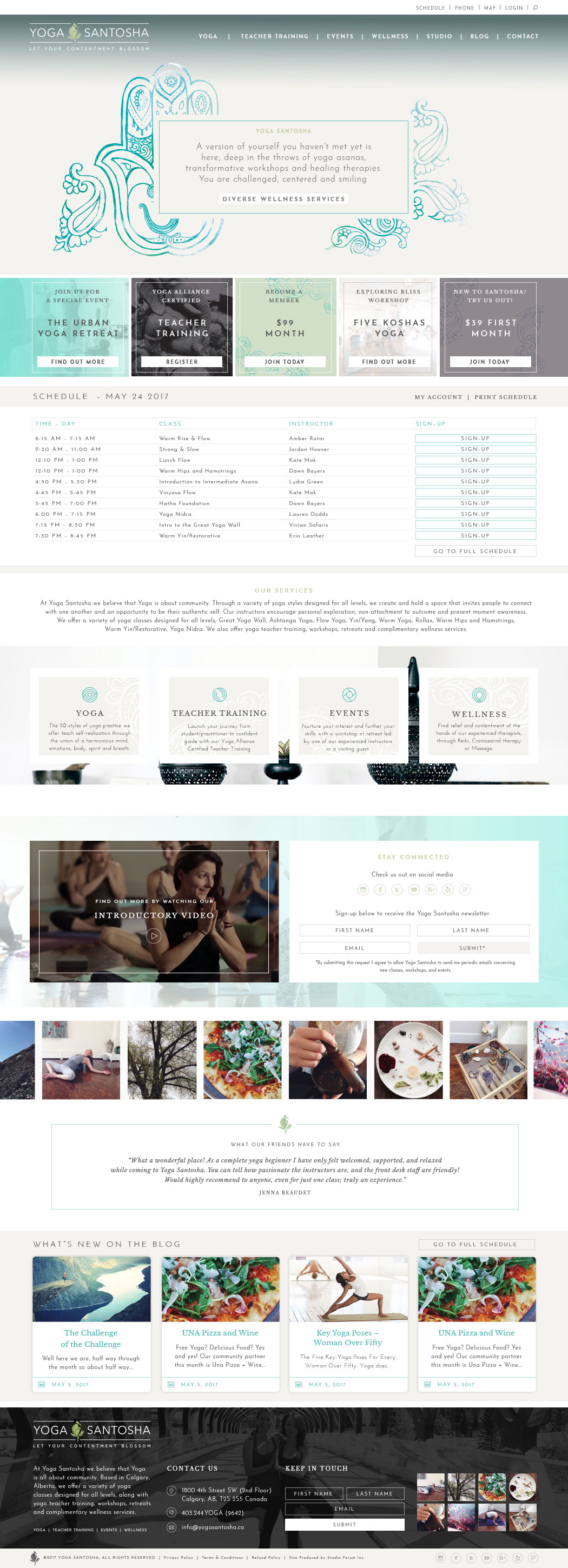 Health and wellness website example